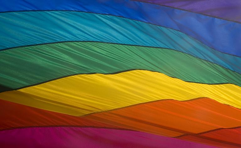 Duluth Superior Pride Main Image